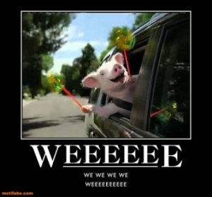 weeeeeeeeee-little-pig-geico-demotivational-posters-12955377121